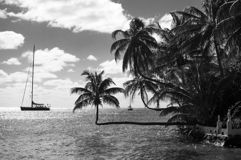 Exploring Moorea by bicycle, French Polynesia. Opunohu Bay, Ta'ahiamanu Beach
