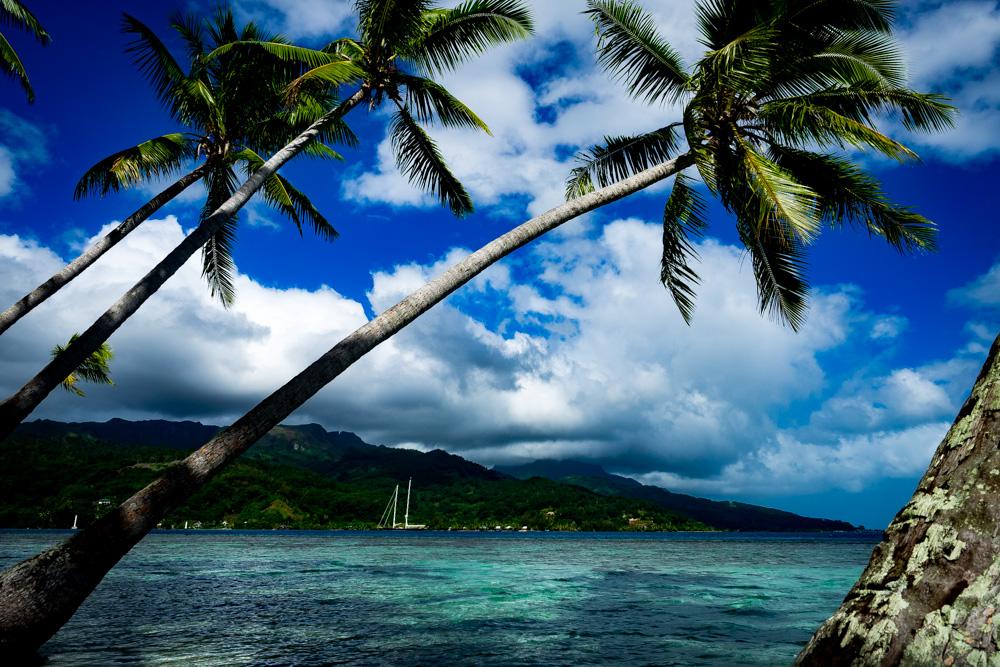 Exploring Raiatea by car, French Polynesia.
