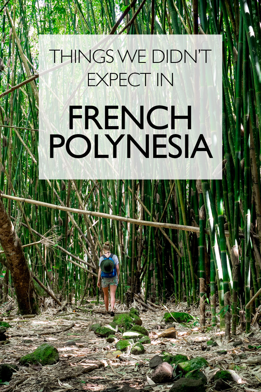 Things We Didn't Expect In French Polynesia