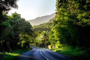 Exploring Moorea by bicycle, French Polynesia