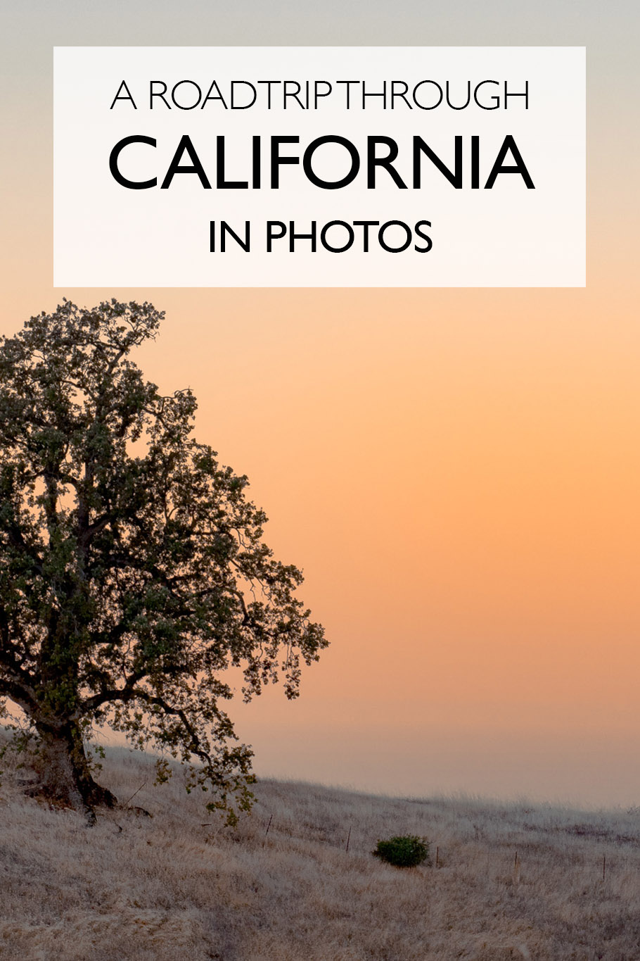 A Roadtrip Through California In Photos | Big Sur | San Francisco | Death Valley | Yosemite |