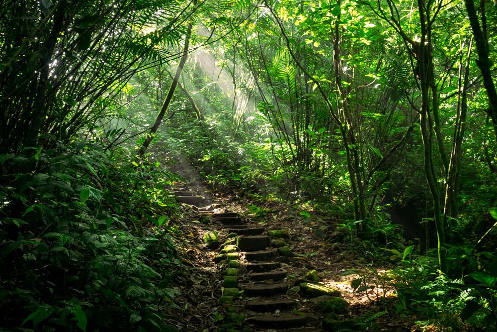 The Best Day Trips From Granada, Nicaragua   Laguna De Apoyo, Volcan Mombacho, Masaya