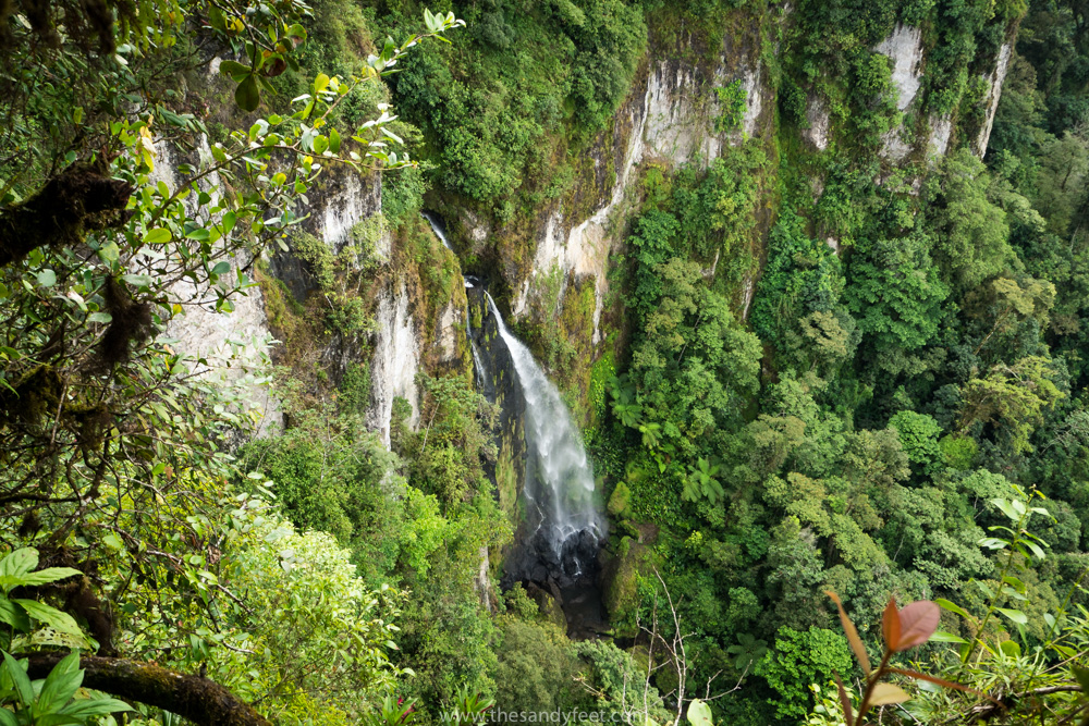 Hiking in Nicaragua: Discovering The Cloud Forests Of Peñas Blancas | Nicaragua