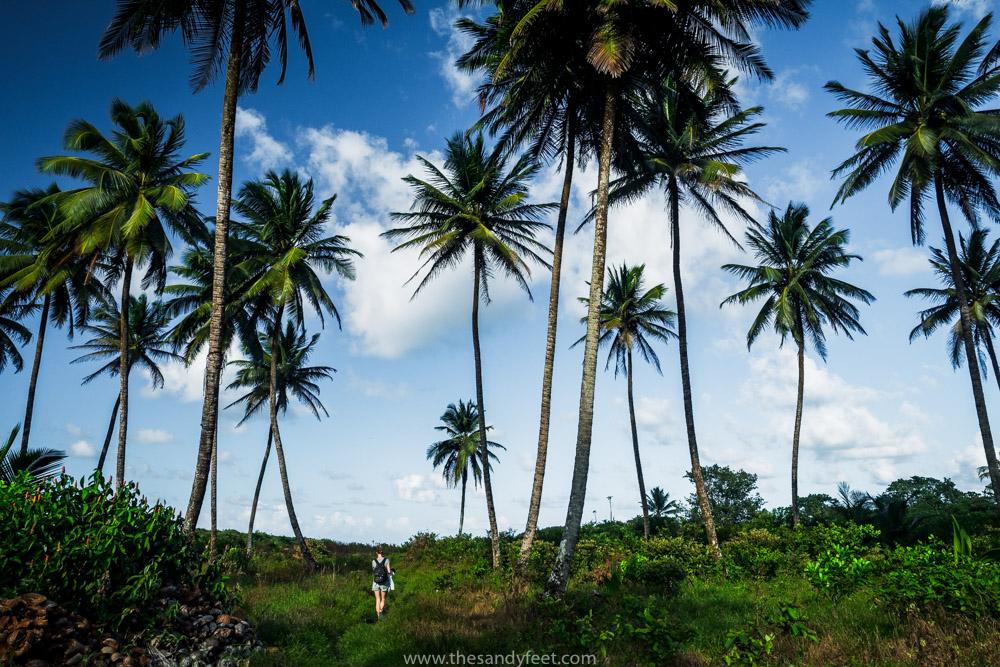 Rio Indio Maiz | Nicaragua Next Destination