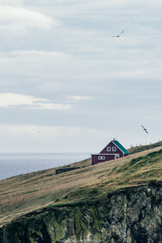 Mykines | Visiting the Faroe Islands