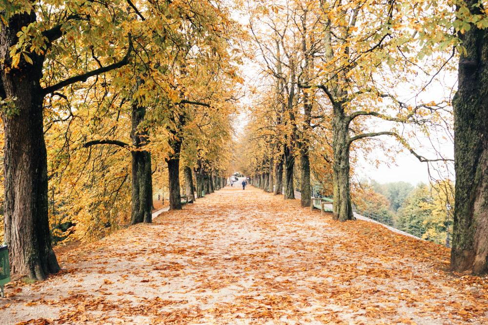 The Best Things To Do In Ljubljana, Slovenia: Europe's Best Kept Secret