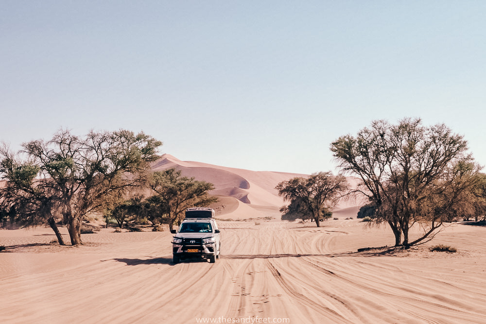 Namibia Roadtrip Itinerary | Namibia Self Drive Itinerary | Self Drive Safari Etosha National Park