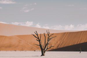 Namibia Roadtrip Itinerary | Namibia Self Drive Itinerary | Sossusvlei and Namib Naukluft National Park