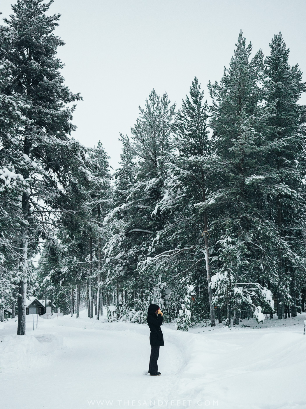 Wonderful Things To Do In Lapland In Winter   Finland   Lapland Activities   What To Do In Lapland   Lapland Holidays