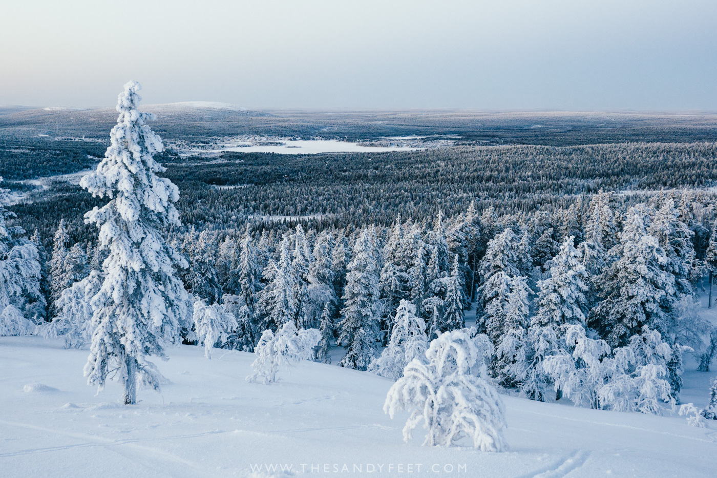 Snow covers Lapland in Winter