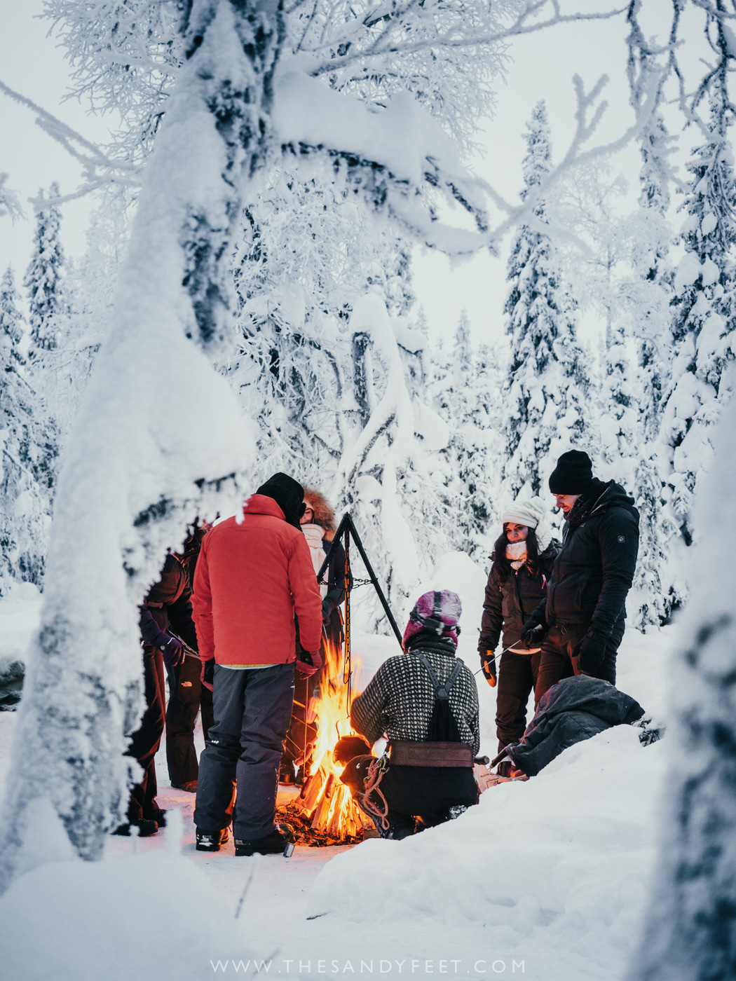 Wonderful Things To Do In Lapland In Winter | Finland | Lapland Activities | What To Do In Lapland | Lapland Holidays