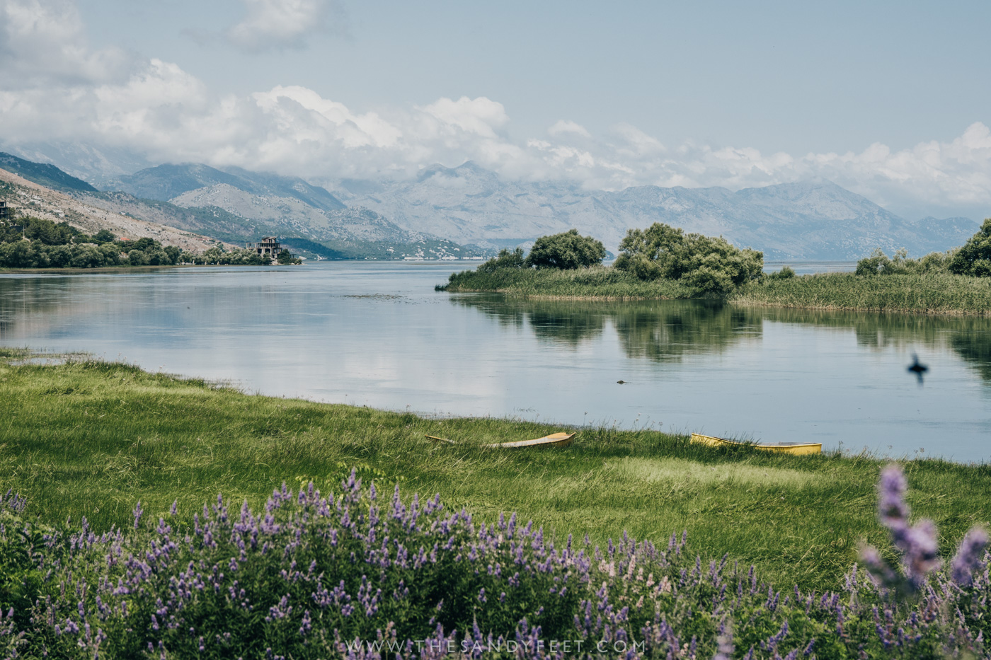 A Short Guide To Shkodra: Albania's Laidback Lakeside Town   The Best Things To Do In Shkodra, Albania