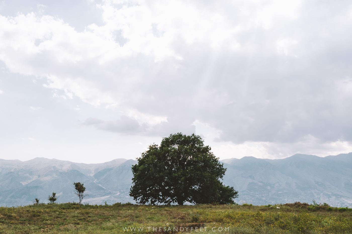 Visiting Antigonea | The Best Things To Do In Gjirokaster, Albania