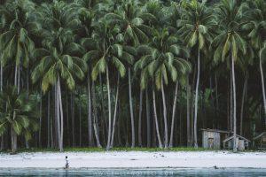 Port Barton Palawan Philippines