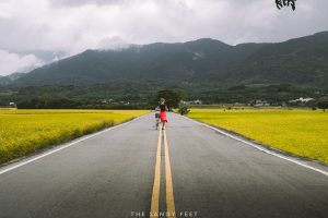 East Rift Valley Taiwan. East Coast Taiwan. Cycling Taiwan. Chishang.