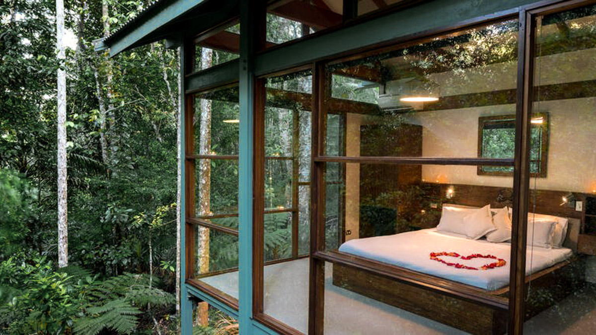 crystal creek rainforest retreat. best sydney experiences.